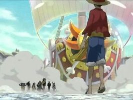 The 10th Strawhat Pirate Has Finally Been Confirmed