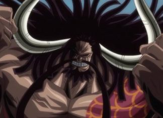 Meaning behind Kaido's suicide intentions.