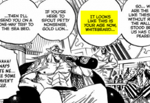 Whitebeard – The Never Becoming King