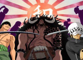 The Swordsman Who Will Cut Kaido