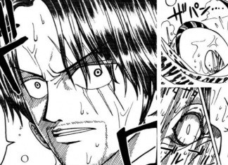 Impressive Foreshadowings in One Piece