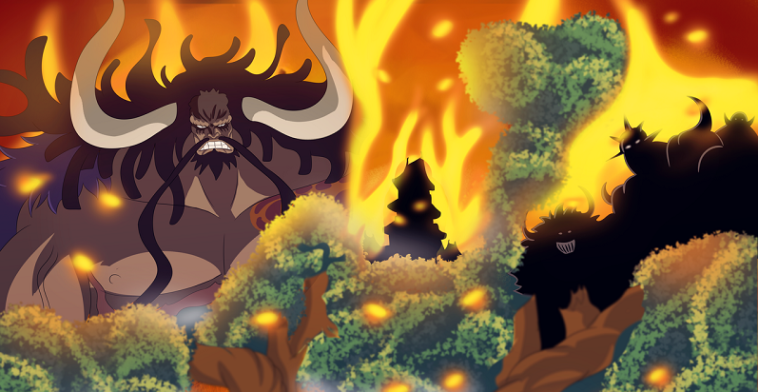 Kaido's Queen and King Disasters Finally Revealed!