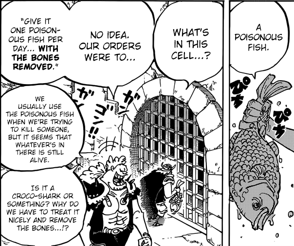 Who Is The Mysterious Prisoner In Kaido's Jail?