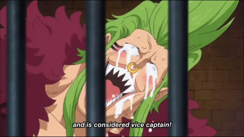 Reasons Why Zoro Has Conqueror's Haki